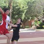 Handball (7)