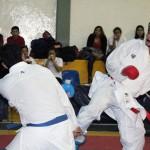 O.E. Karate Do (11)